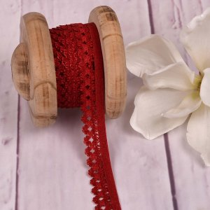 Elastic Lace Curved Edge Red 20mm